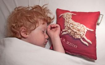 Beter slapen door Alpendensnippers. Geen grap!