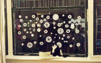 Verslavend leuk om te maken: papieren sneeuwvlokken en ijskristallen.