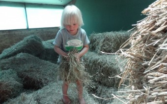 Hooi hooi! Je kind als boer in de hoofdrol bij Farmcamps.