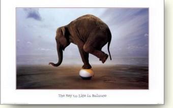De pleaser uit balans