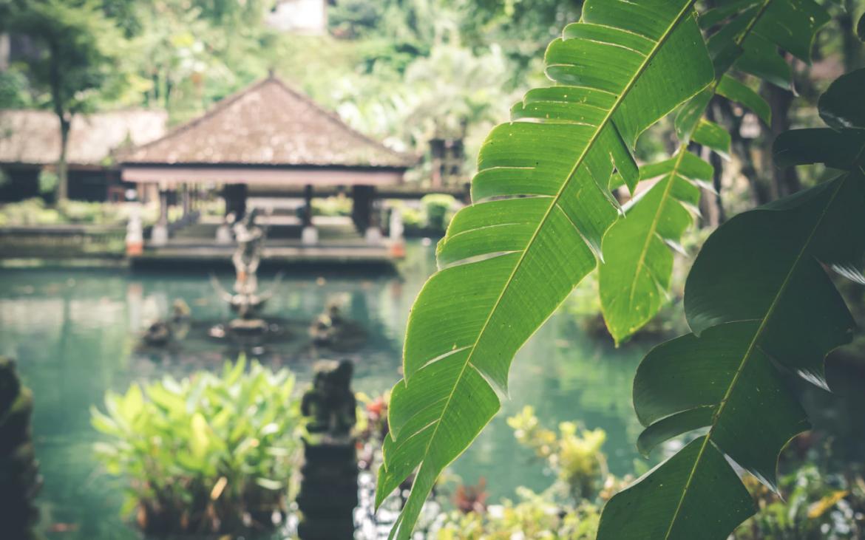 Hierom wil jij met je kinderen naar Bali en Indonesië reizen