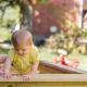 Waarom is een speeltoestel goed voor in de tuin?